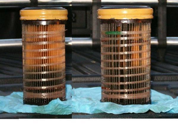 cat fuel filter