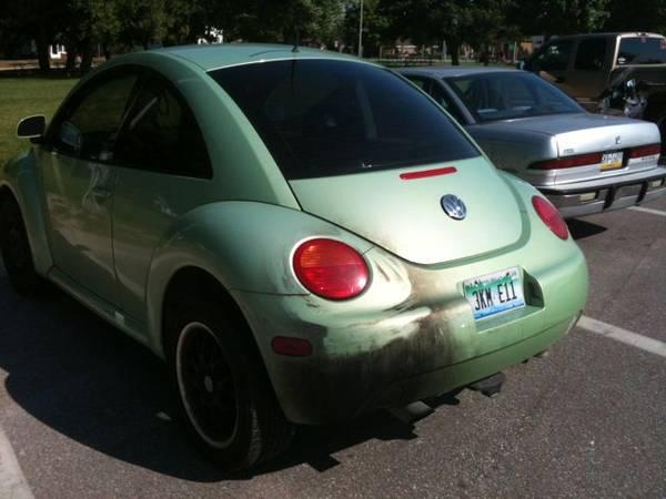 lew's beetle 3