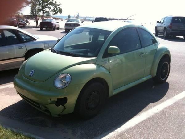 lew's beetle 1
